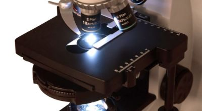 ТОП-6 лучших бинокулярных микроскопов: особенности, плюсы и минусы, где купить недорого